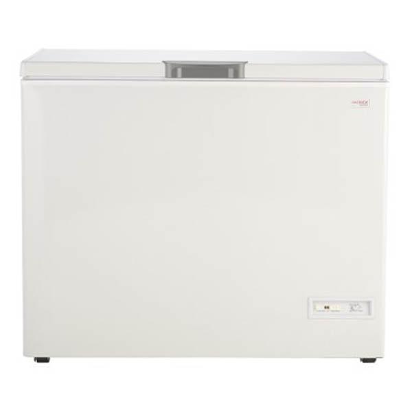 Freezer Patrick Fhp300B 300 Lts